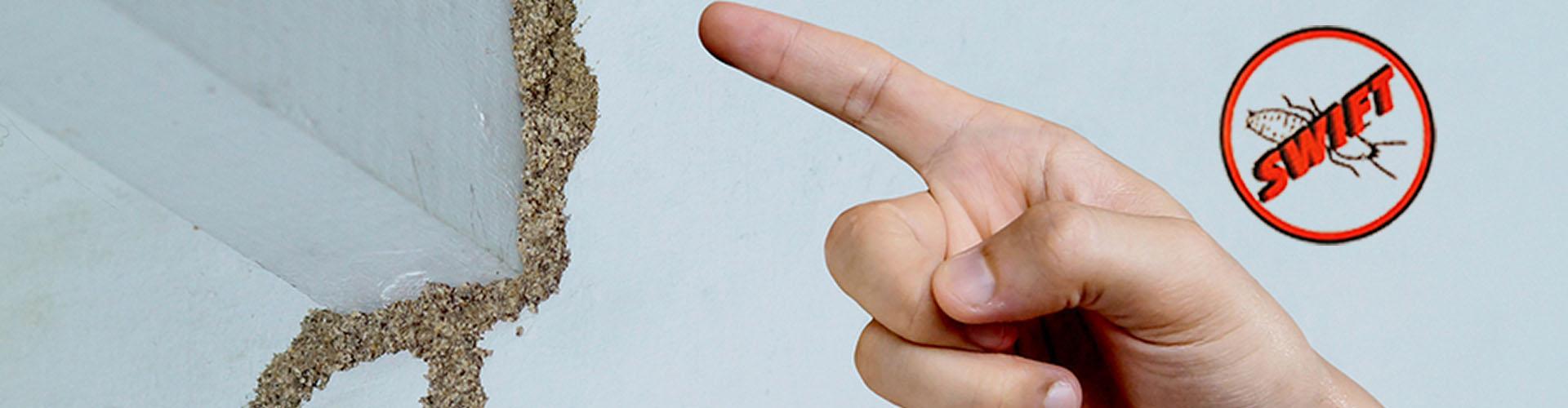 SWIFT Termite Control
